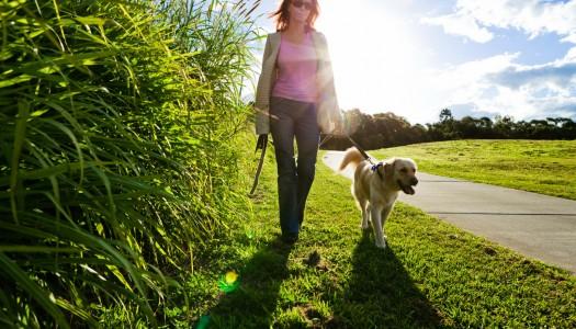 Brzo hodanje – efektnije od teretane uz pravilnu tehniku