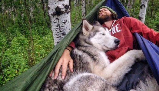 Put oko sveta sa svojim psom