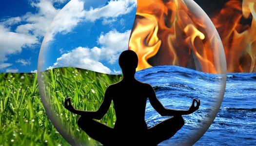 Šta meditacija čini ljudskom organizmu