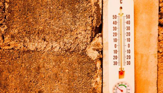 Kako da podnesete letnju vrelinu bez klime