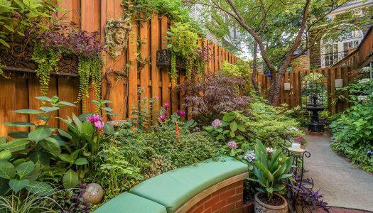 Biljke za baštu koje će oterati insekte