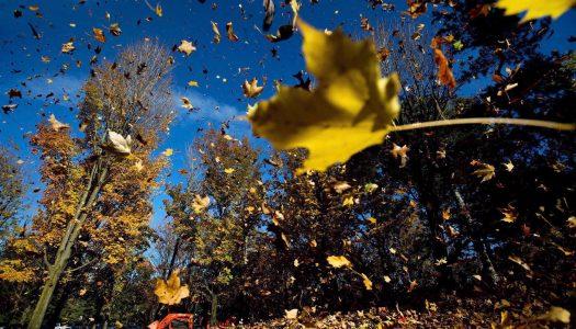 Praktični saveti za pripremu kuće u sezoni jeseni