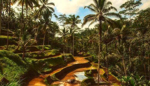 Bali – ostrvo koje će vam promeniti pogled na život